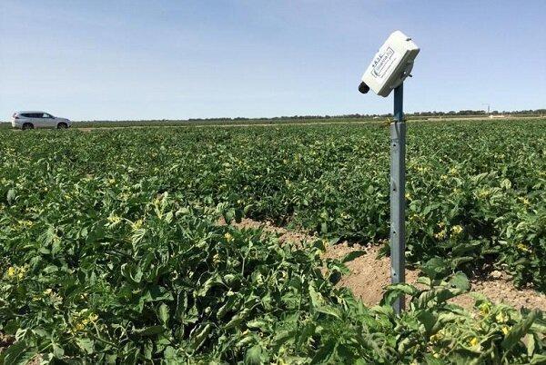 حسگرهای هوشمند مدیریت مصرف آب کشاورزی را تسهیل می نمایند