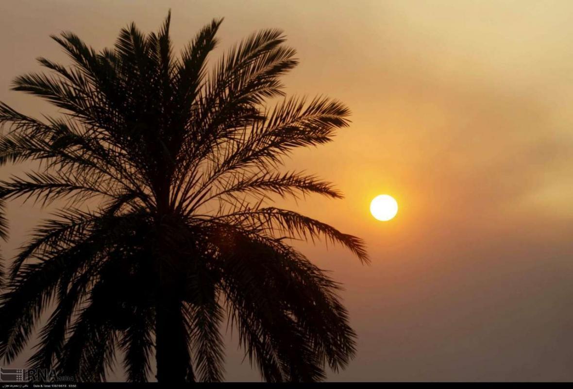 خبرنگاران دمای 12 شهرستان خوزستان از مرز 50 درجه گذشت