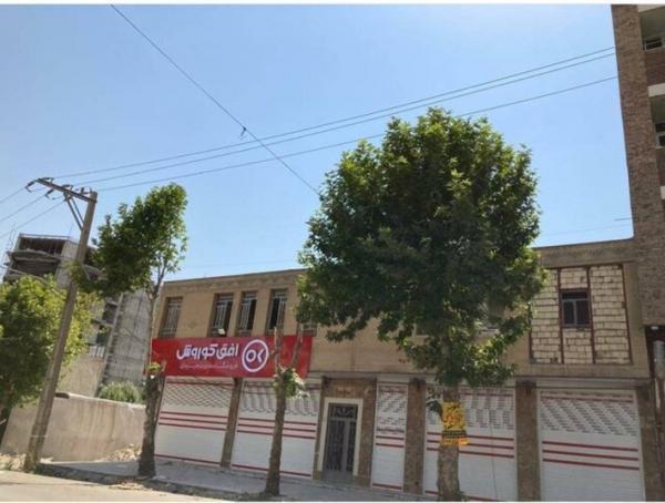 توضیحات مسئولان در مورد قطع درختان خیابان معلم یاسوج