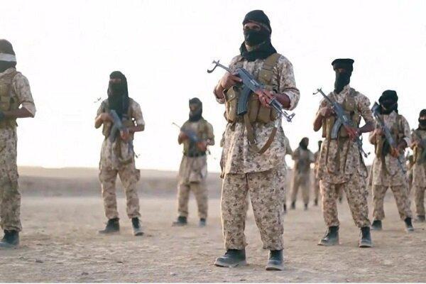 هلاکت یک سرکرده گروهک تروریستی القاعده در بیضاء یمن