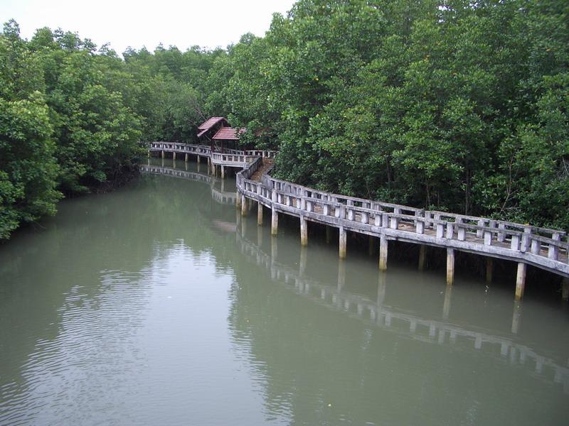 آشنایی با هتل مانگرو، کوه چانگ